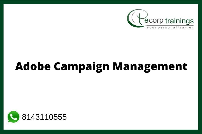 Adobe Campaign Management Training