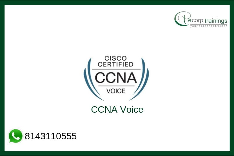 CCNA Voice Training