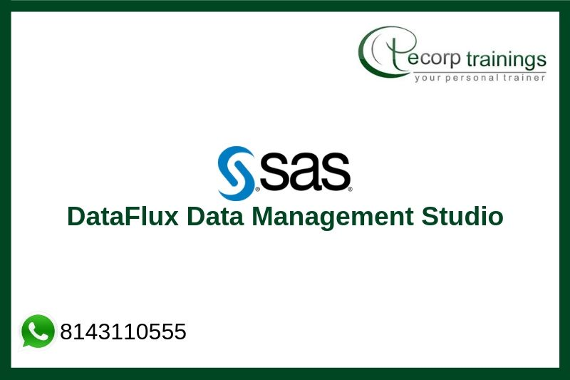 DataFlux Data Management Studio Training