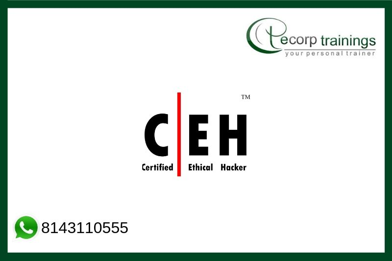 Certified Ethical Hacking Training