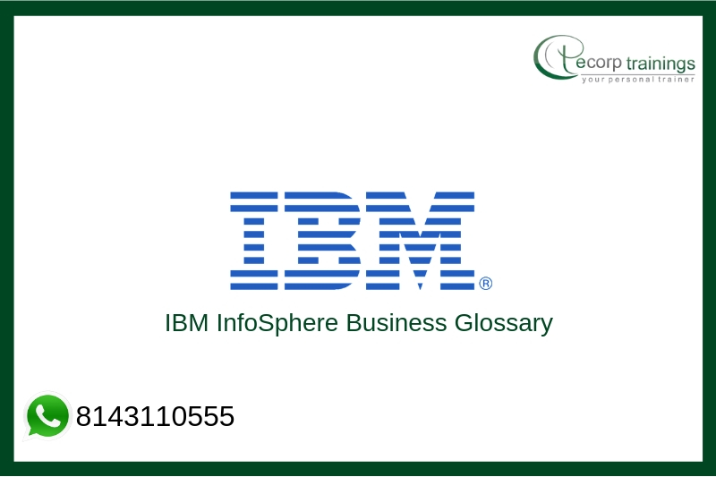 IBM InfoSphere Business Glossary Training
