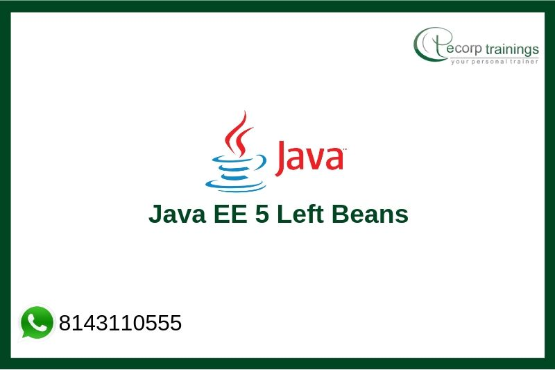 Java EE 5 Left Beans Training