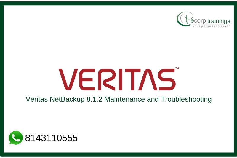 Veritas NetBackup 8.1.2: Maintenance and Troubleshooting Training