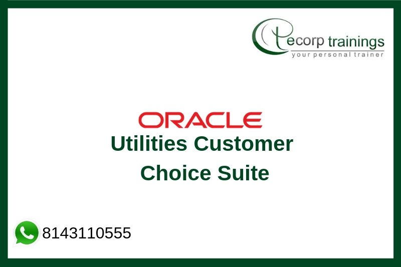 Oracle Utilities Customer Choice Suite Training