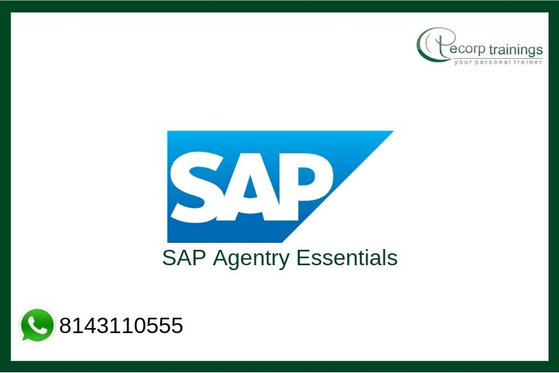 SAP Agentry Essentials Training