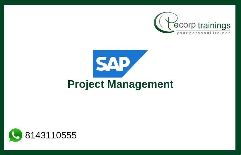SAP Project Management Training