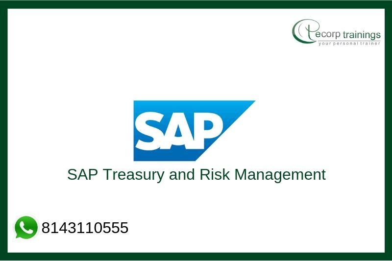 SAP Treasury and Risk Management Training